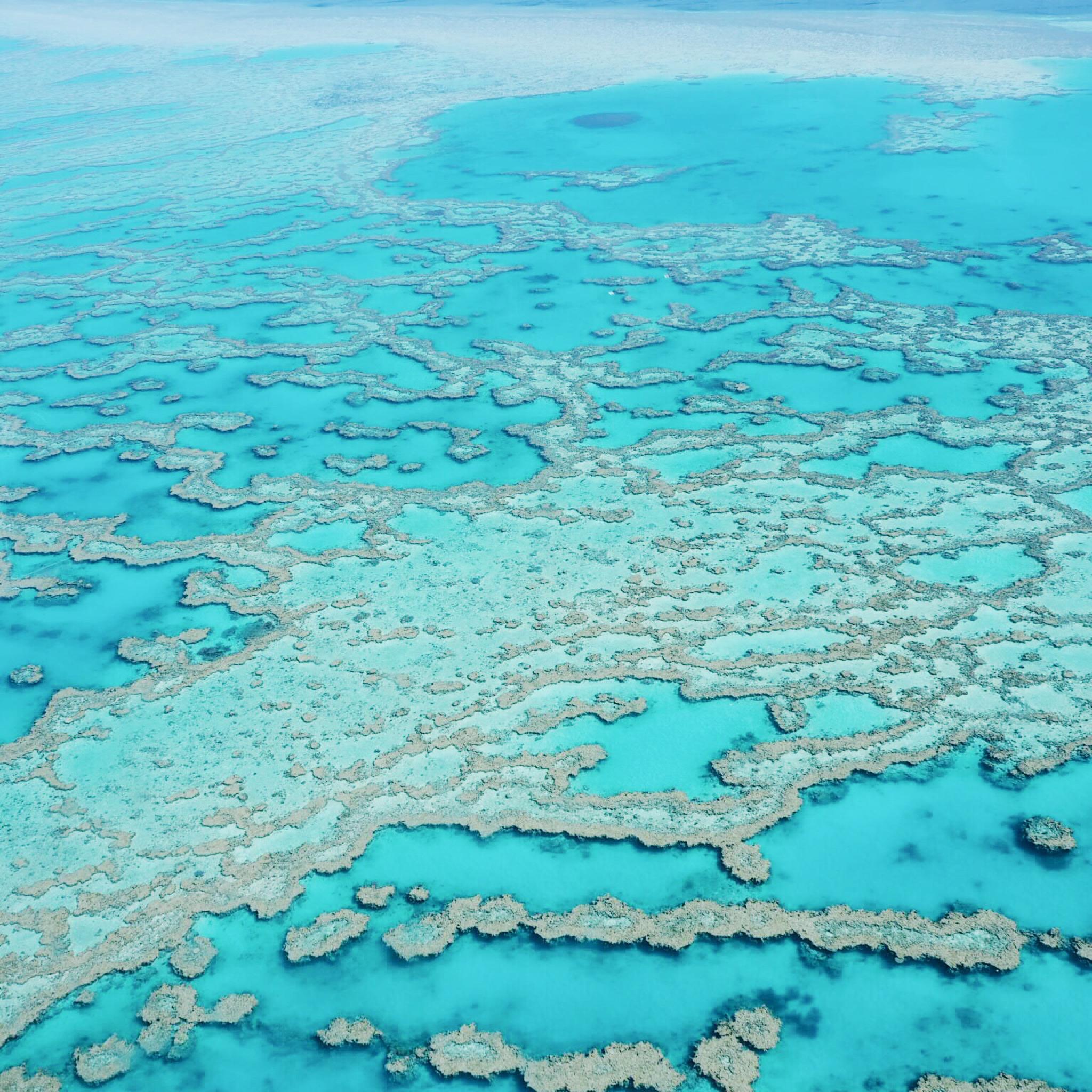 Great Barrier Reef Aviation Adventure